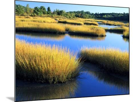 Salt Marsh at Sunrise, Estuary of New Meadow River in Early Autumn, Maine, Usa-Scott T^ Smith-Mounted Photographic Print