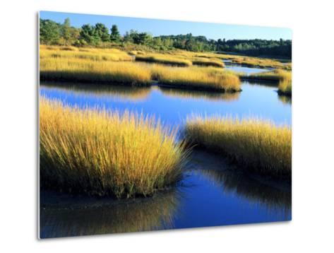 Salt Marsh at Sunrise, Estuary of New Meadow River in Early Autumn, Maine, Usa-Scott T^ Smith-Metal Print