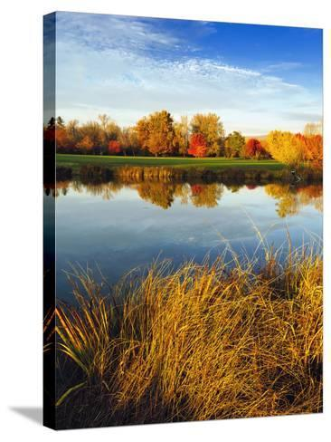 Fall Color and Reflection in the Yakima Arboretum, Yakima, Washington, Usa-Richard Duval-Stretched Canvas Print