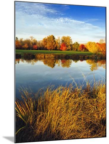 Fall Color and Reflection in the Yakima Arboretum, Yakima, Washington, Usa-Richard Duval-Mounted Photographic Print