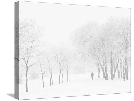 Winter, Saint Petersburg, Russia-Nadia Isakova-Stretched Canvas Print