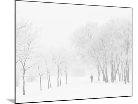 Winter, Saint Petersburg, Russia-Nadia Isakova-Mounted Photographic Print