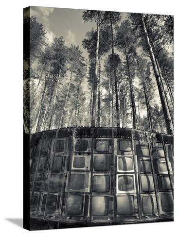 Lithuania, Vilnius-Area, Europos Parkas Sculpture Park, Lnk Infotree by Gintaras Karosas, 2001, Wor-Walter Bibikow-Stretched Canvas Print