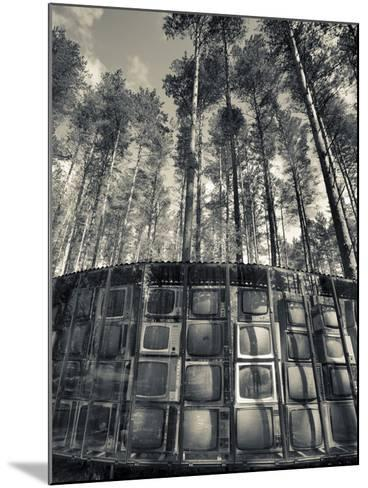 Lithuania, Vilnius-Area, Europos Parkas Sculpture Park, Lnk Infotree by Gintaras Karosas, 2001, Wor-Walter Bibikow-Mounted Photographic Print