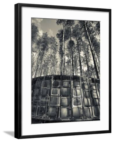 Lithuania, Vilnius-Area, Europos Parkas Sculpture Park, Lnk Infotree by Gintaras Karosas, 2001, Wor-Walter Bibikow-Framed Art Print