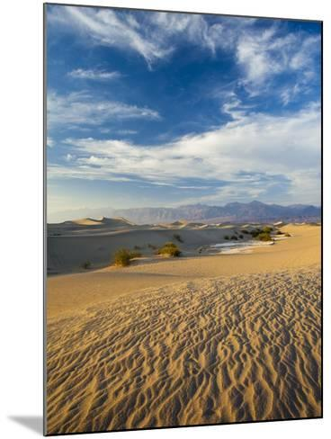 USA, California, Death Valley National Park, Mesquite Flat Sand Dunes-Walter Bibikow-Mounted Photographic Print