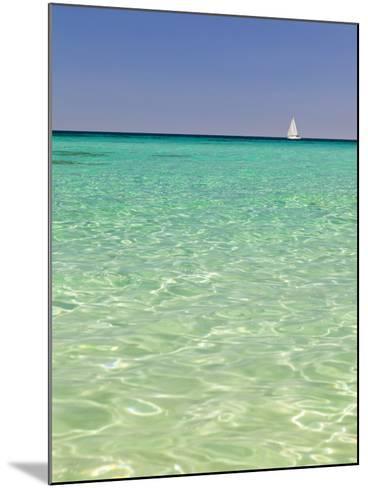 Italy, Sardinia, Olbia-Tempo, Berchidda, a Sailing Boat Out at Sea-Nick Ledger-Mounted Photographic Print