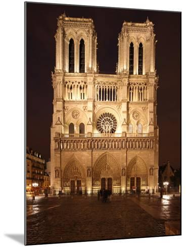 The Famous Cathedral of Notre Dame in Paris after the Rain, France-David Bank-Mounted Photographic Print