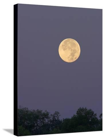 Full Moon-Glenn Bartley-Stretched Canvas Print