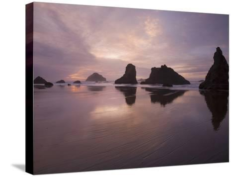 Sea Stacks Along the Oregon Coast-Sean Bagshaw-Stretched Canvas Print