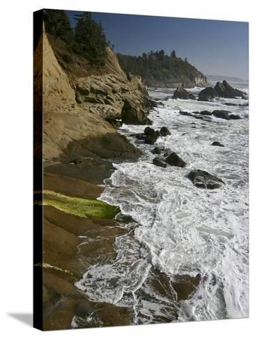 Cape Arago Is a Scenic Headland Jutting into the Pacific Ocean, Oregon, USA-Sean Bagshaw-Stretched Canvas Print