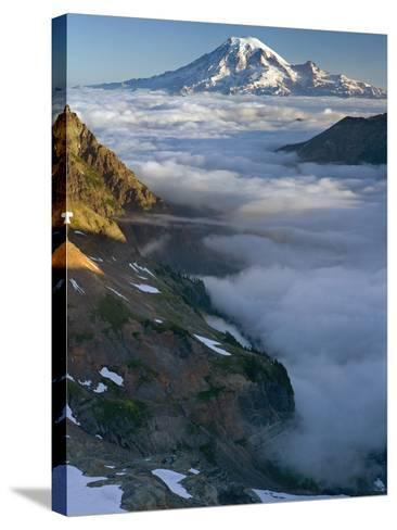 View of Mt. Rainier Above the Clouds from the Goat Rocks Wilderness, Washington, USA-David Cobb-Stretched Canvas Print