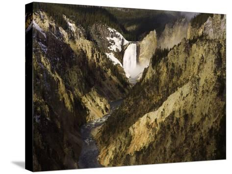Lower Yellowstone Falls, Grand Canyon of the Yellowstone River, Yellowstone National Park, Wyoming-David Cobb-Stretched Canvas Print