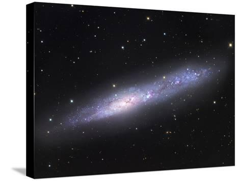 NGC 55, Irregular Galaxy in Sculptor NGC 55 Is One of the Nearest Members of the Sculptor Galaxy-Robert Gendler-Stretched Canvas Print