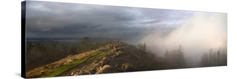 Simultaneous Sunlight and Fog on Spencer Butte in the Coast Ranges-Marli Miller-Stretched Canvas Print