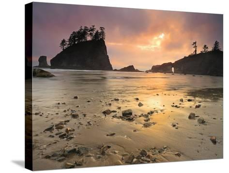 Sunset Light Through Breaks in the Clouds on Second Beach, Olympic National Park, Washington, USA-Geoffrey Schmid-Stretched Canvas Print