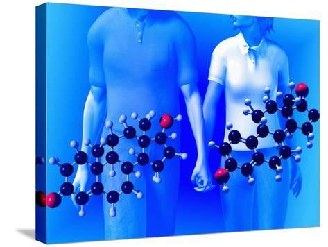 Molecular Models of the Hormones Testosterone (Left) and Estrogen (Right)-Carol & Mike Werner-Stretched Canvas Print