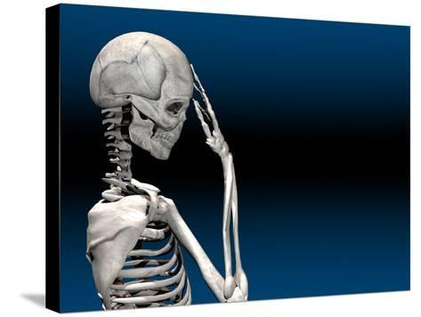 Skeleton with a Headache-Carol & Mike Werner-Stretched Canvas Print