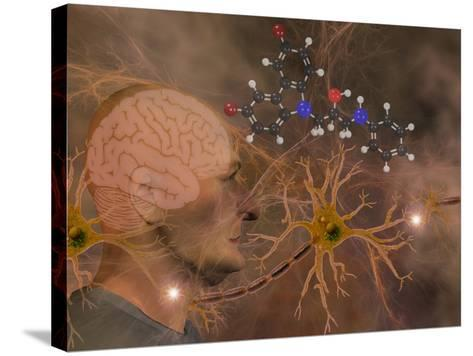 Illustration of P7C3 and Alzheimer's Disease-Carol & Mike Werner-Stretched Canvas Print