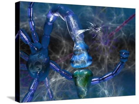 Nervous System Showing Neurons, Neurotransmitter Activity at a Synapse, Glial Cells-Carol & Mike Werner-Stretched Canvas Print