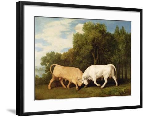Bulls Fighting, 1786 (Oil on Panel)-George Stubbs-Framed Art Print
