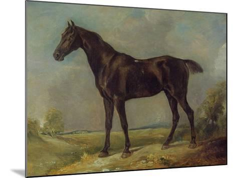 Golding Constable's Black Riding-Horse, C.1805-10 (Oil on Panel)-John Constable-Mounted Giclee Print
