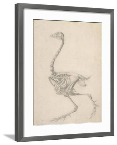 The Skeleton of a Fowl-George Stubbs-Framed Art Print