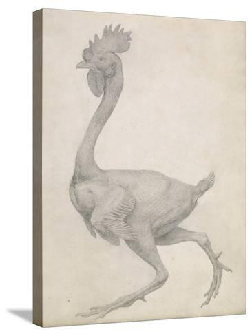 Fowl: Lateral View with Most Feathers Removed-George Stubbs-Stretched Canvas Print