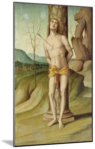 St. Sebastian (Oil on Panel)-Marco Palmezzano-Mounted Giclee Print