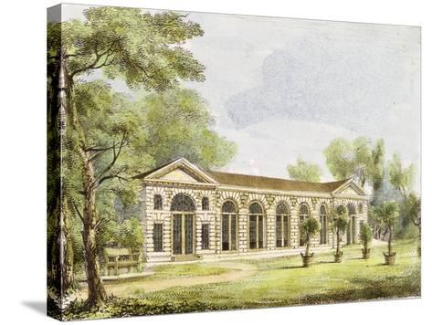 Orangery, Kew Gardens, Plate 11 from 'Kew Gardens: a Series of Twenty-Four Drawings on Stone'-George Ernest Papendiek-Stretched Canvas Print