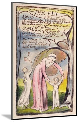 The Fly', Plate 37 from 'Songs of Innocence and of Experience' [Bentley 40] C.1789-94-William Blake-Mounted Giclee Print
