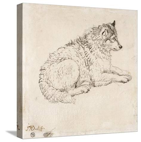 Arctic Dog, Facing Right (Pencil on Paper)-James Ward-Stretched Canvas Print