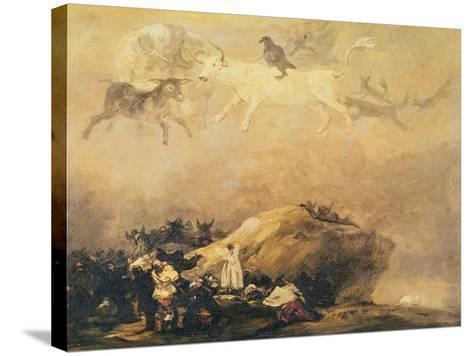 Capriccio Scene: Animals in the Sky-Francisco de Goya-Stretched Canvas Print
