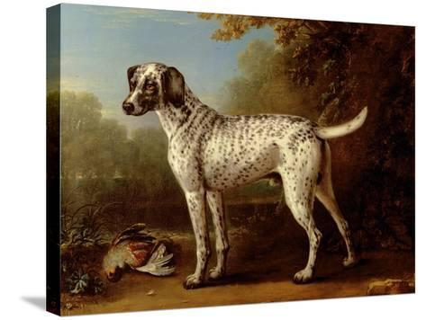 Grey Spotted Hound, 1738-John Wootton-Stretched Canvas Print