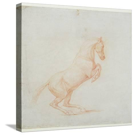 A Prancing Horse, Facing Right, 1790 (Red Chalk on Paper)-George Stubbs-Stretched Canvas Print