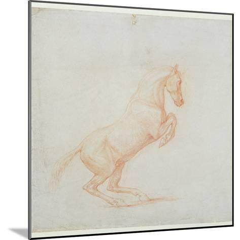 A Prancing Horse, Facing Right, 1790 (Red Chalk on Paper)-George Stubbs-Mounted Giclee Print