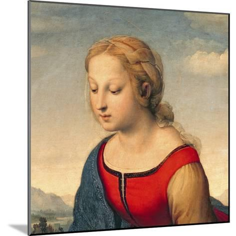 La Belle Jardiniere, 1507 (Oil on Panel) (Detail of 8546)-Raphael-Mounted Giclee Print