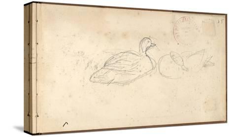Two Ducks (Pencil on Paper)-Claude Monet-Stretched Canvas Print