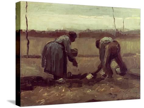 Two Peasants Planting Potatoes, 1885-Vincent van Gogh-Stretched Canvas Print