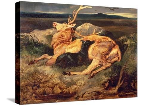 Stag-Edwin Henry Landseer-Stretched Canvas Print