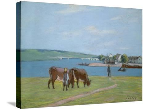 Cows on the Banks of the Seine at Saint-Mammes (Pastel)-Alfred Sisley-Stretched Canvas Print