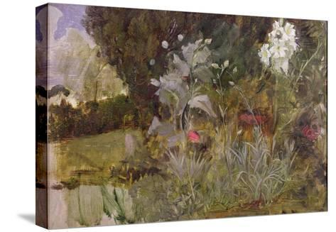 Study of Flowers and Foliage, for 'The Enchanted Garden'-John William Waterhouse-Stretched Canvas Print