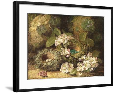 Primroses and Bird's Nests on a Mossy Bank, 1882-Oliver Clare-Framed Art Print