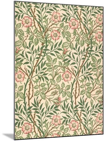 sweet Briar' Design for Wallpaper, Printed by John Henry Dearle (1860-1932) 1917-William Morris-Mounted Giclee Print