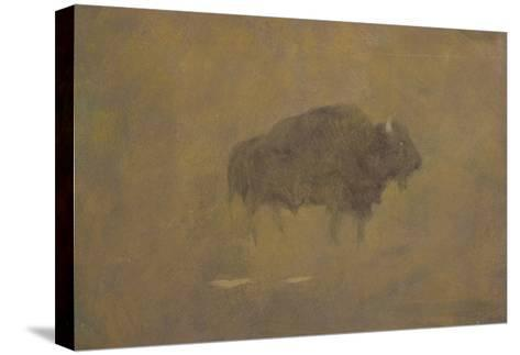 Buffalo in a Sandstorm (Oil on Paper Mounted on Board)-Albert Bierstadt-Stretched Canvas Print