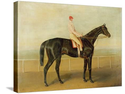 Voltigeur, with Job Marson Up-Samuel Spode-Stretched Canvas Print