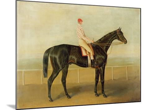 Voltigeur, with Job Marson Up-Samuel Spode-Mounted Giclee Print
