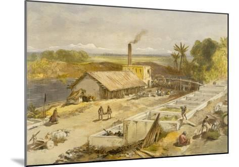 Indigo Factory - Bengal, from 'India Ancient and Modern', 1867 (Colour Litho)-William 'Crimea' Simpson-Mounted Giclee Print