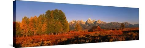 Sunrise Grand Teton National Park WY USA--Stretched Canvas Print