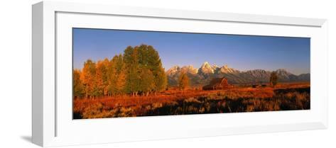 Sunrise Grand Teton National Park WY USA--Framed Art Print